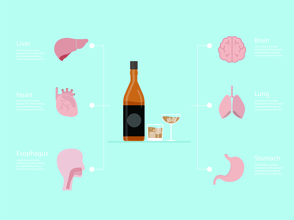Alcohol Withdrawal Timeline - How Alcohol Affects Body